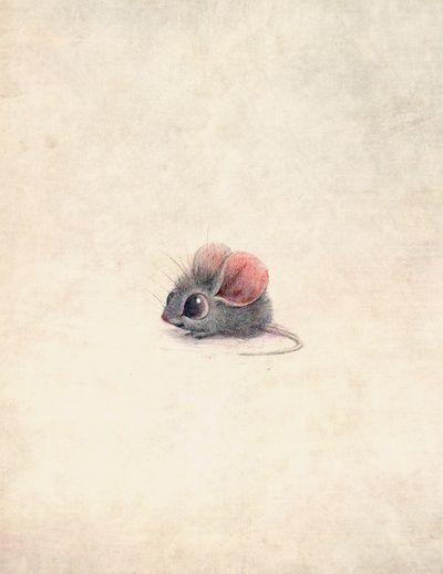 Drawn rodent little mouse Colour images Inspiration: Art