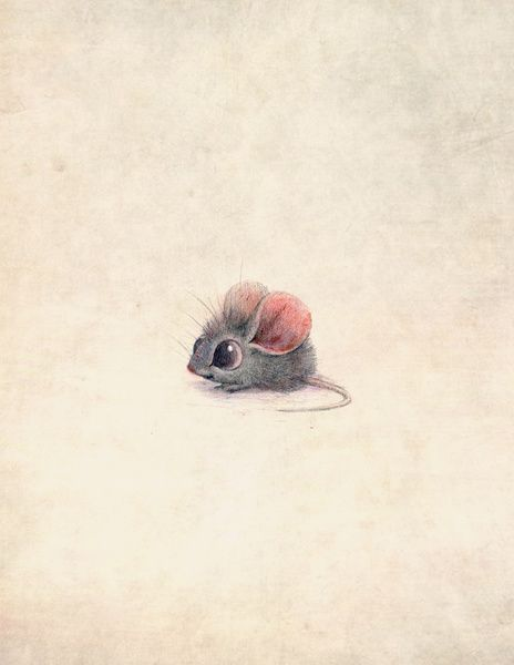 Drawn rodent love (via Bloglovin de 303 dierenprints