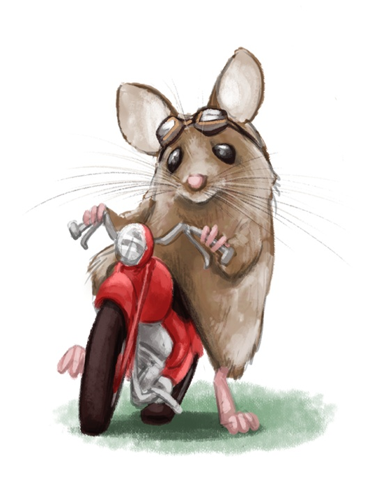 Drawn rodent love Best Mice Pin Pinterest 1063