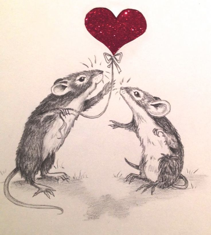 Drawn rodent love Images on ratties Hearts 125