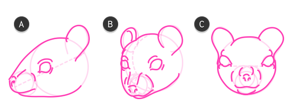 Drawn rodent rodent Animals: How rodent to head