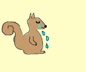Drawn rodent sad Squirrel yav) squirrel by (drawing