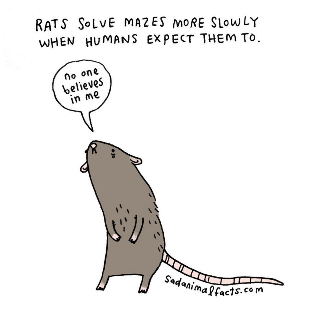 Drawn rodent sad RANGE can female sad bummer