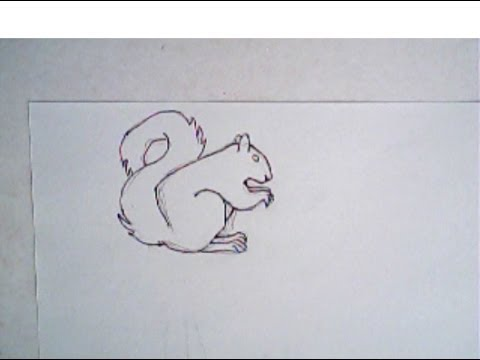 Drawn rodent simple Draw a squirrel drawing) drawing)