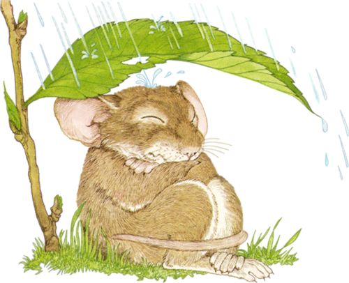 Drawn rodent umbrellas 000 on Clipart~ png Pinterest