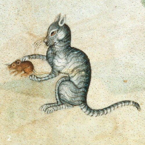 Drawn rodent vintage cat Cats images this Pinterest Find