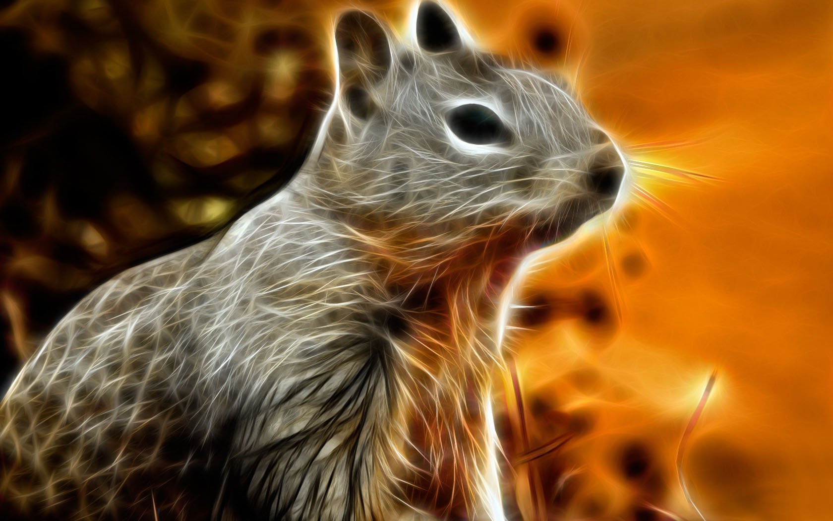 Drawn rodent wallpaper Animal wallpapers pictures and wallpapers