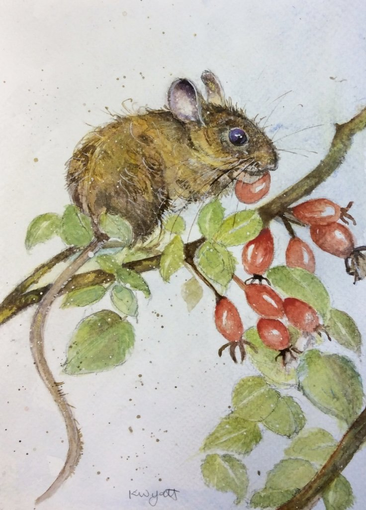 Drawn rodent watercolour Watercolour Wyatt Wood With Mouse