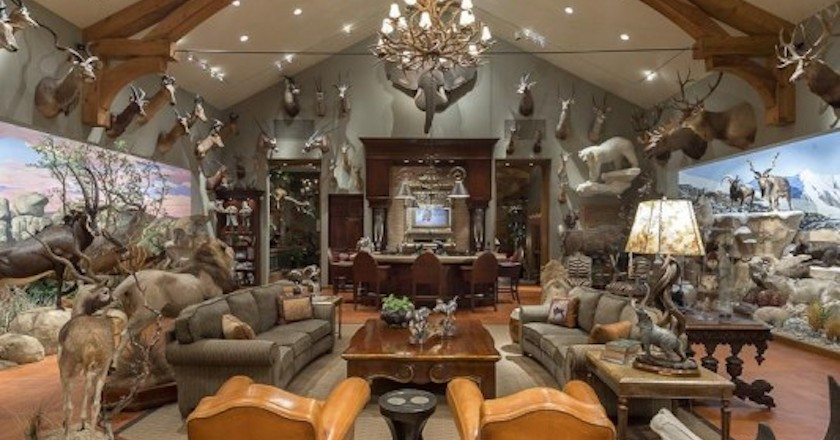 Drawn room trophy room Rooms 11 These Unbelievable Hunters'