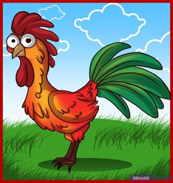 Drawn rooster animated Cartoon  Draw & (Male