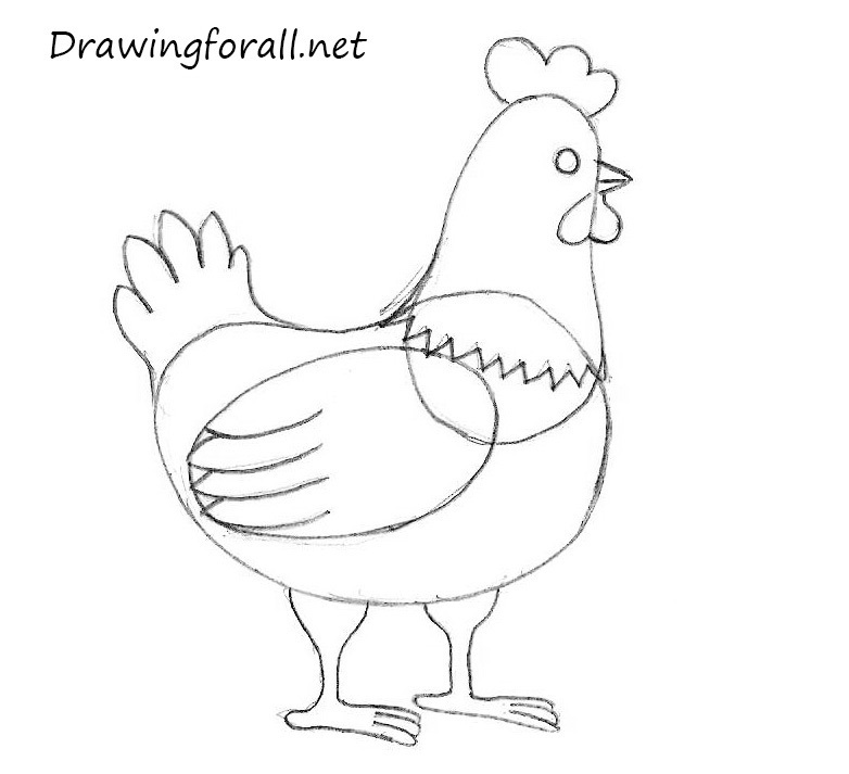 Drawn rooster easy A Chicken for Draw How