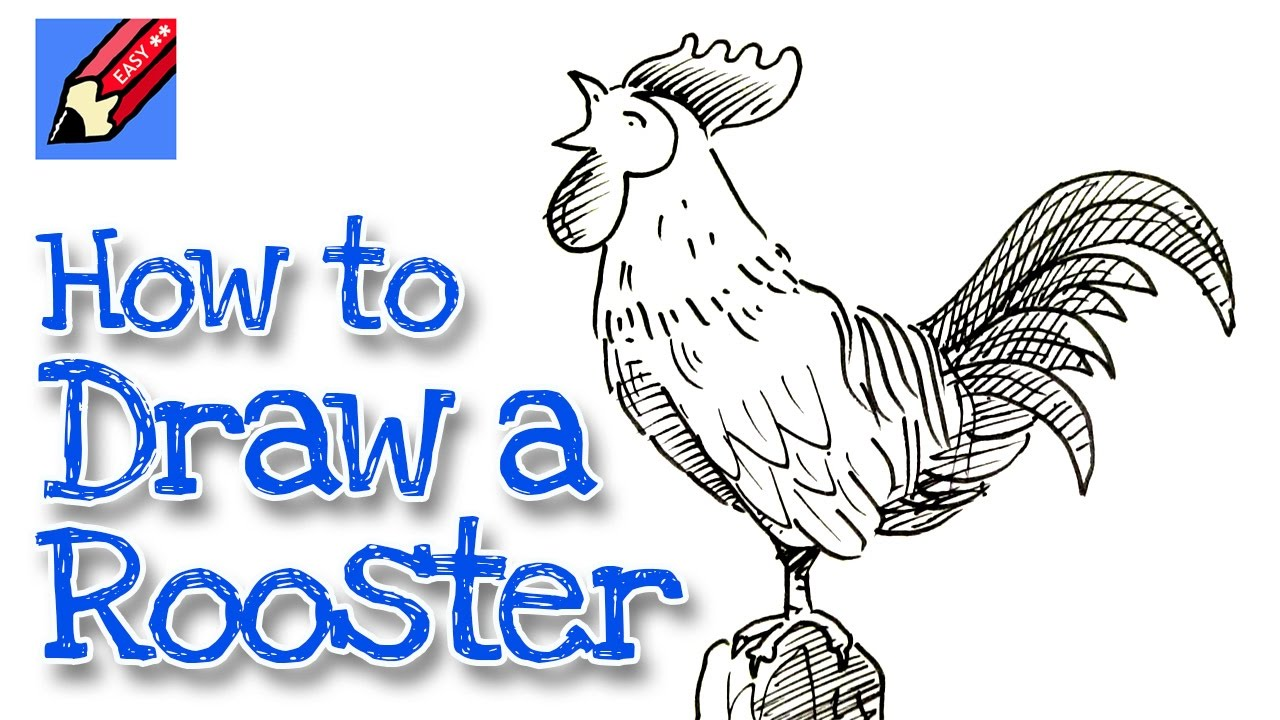 Drawn rooster easy A a Year New YouTube