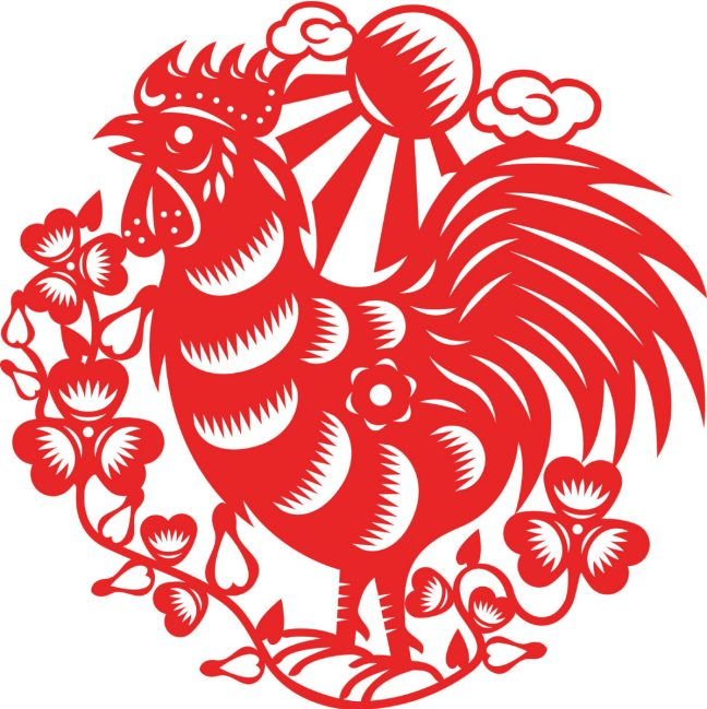 Drawn rooster fire Rooster Fire the Star Rooster