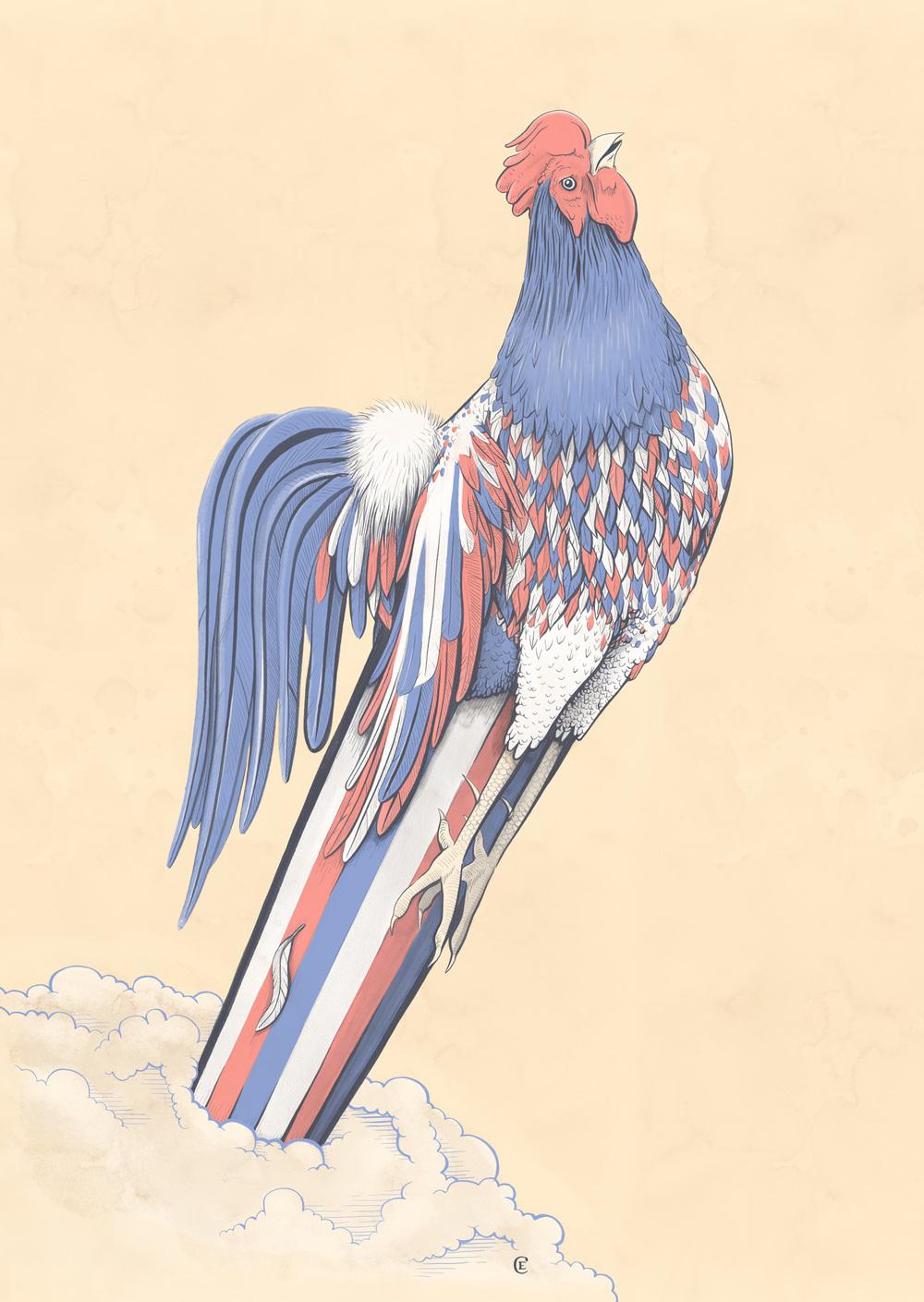 Drawn rooster gallic rooster — L'Officiel Rooster Hommes Edser