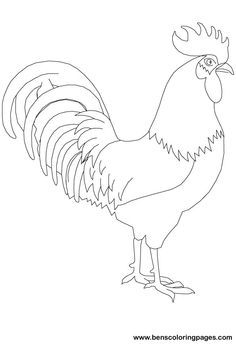 Drawn rooster gallic rooster  Print To To Free