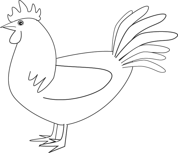Drawn rooster line drawing #9