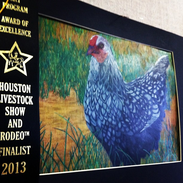 Drawn rooster rodeo Show honors Fifteen Houston Livestock