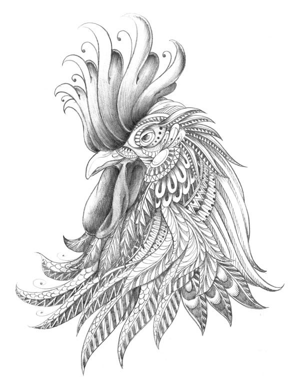 Drawn rooster sketch By Behance best BioWorkZ roosters