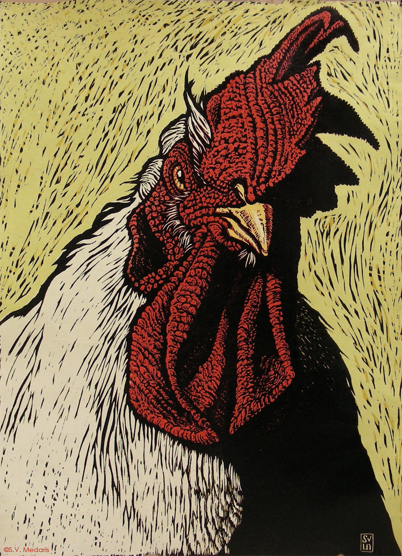Drawn rooster woodcut #4