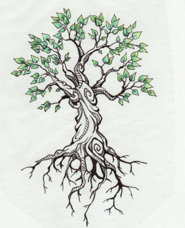 Drawn roots On Pinterest all tattoo a