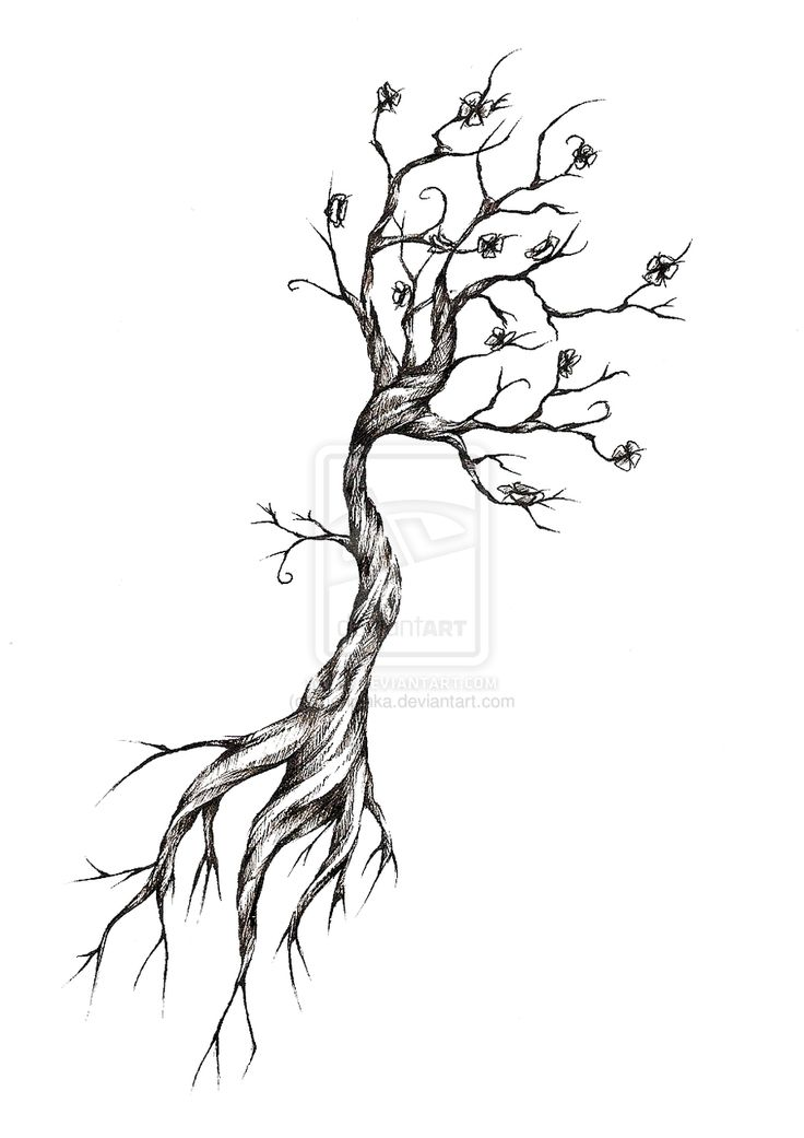 Drawn roots Net/fs70/ for http://fc04 Image 25+