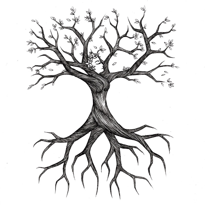 Drawn roots Tree Roots Sketch ideas for