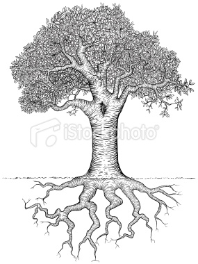 Drawn roots Tree 2012 the 04 me]