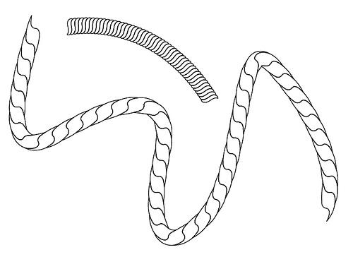 Drawn rope Design Forum in Graphic Illustrator