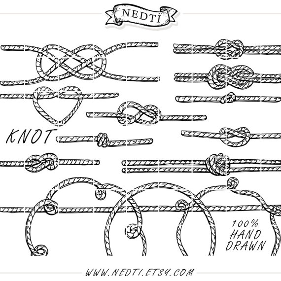 Drawn rope vector Digital  Knotted Tied Studio