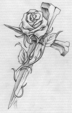 Drawn rose 11 year old And Cross Rose rose Stem