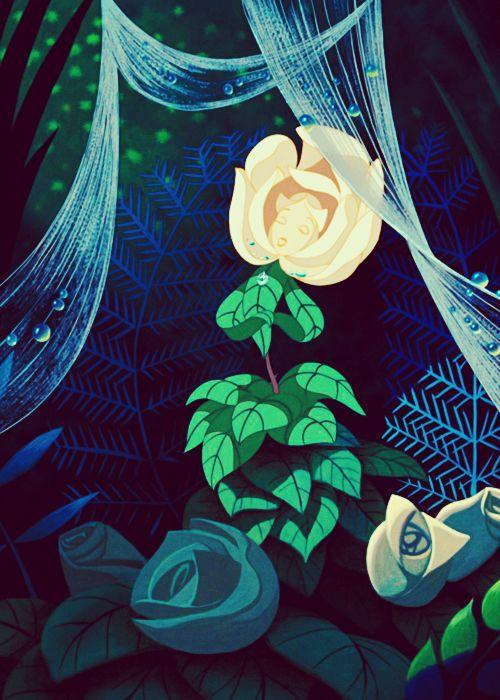 Drawn rose alice in wonderland Cat Cheshire Alice 1951 images