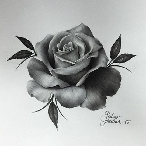 Drawn rose artistic T ideas S on O