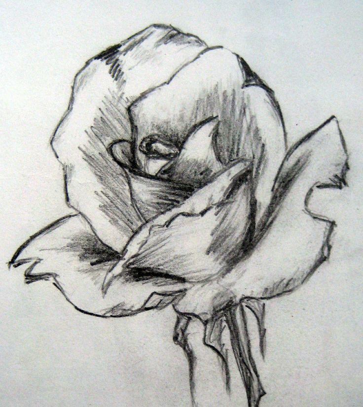Drawn rose awesome Pinterest Com: Art draw (•)