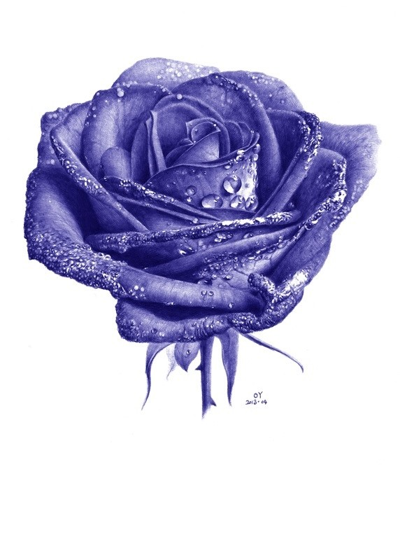 Drawn rose ballpoint pen Using drawing drawing Art flower