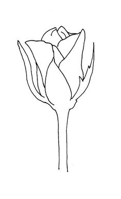 Drawn rose basic Own Flower Leafs! create drawing