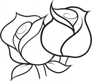 Drawn rose basic How A Draw Collection A
