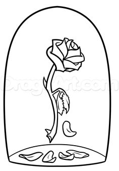 Drawn rose detailed And beast by Beauty the