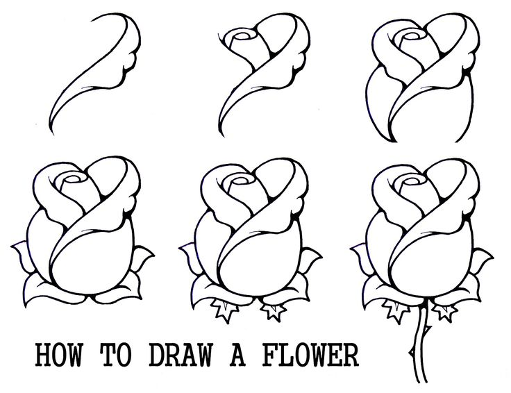 Drawn rose beginner For Draw How Art to