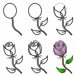 Drawn rose beginner Easy Rose Day Drawing How