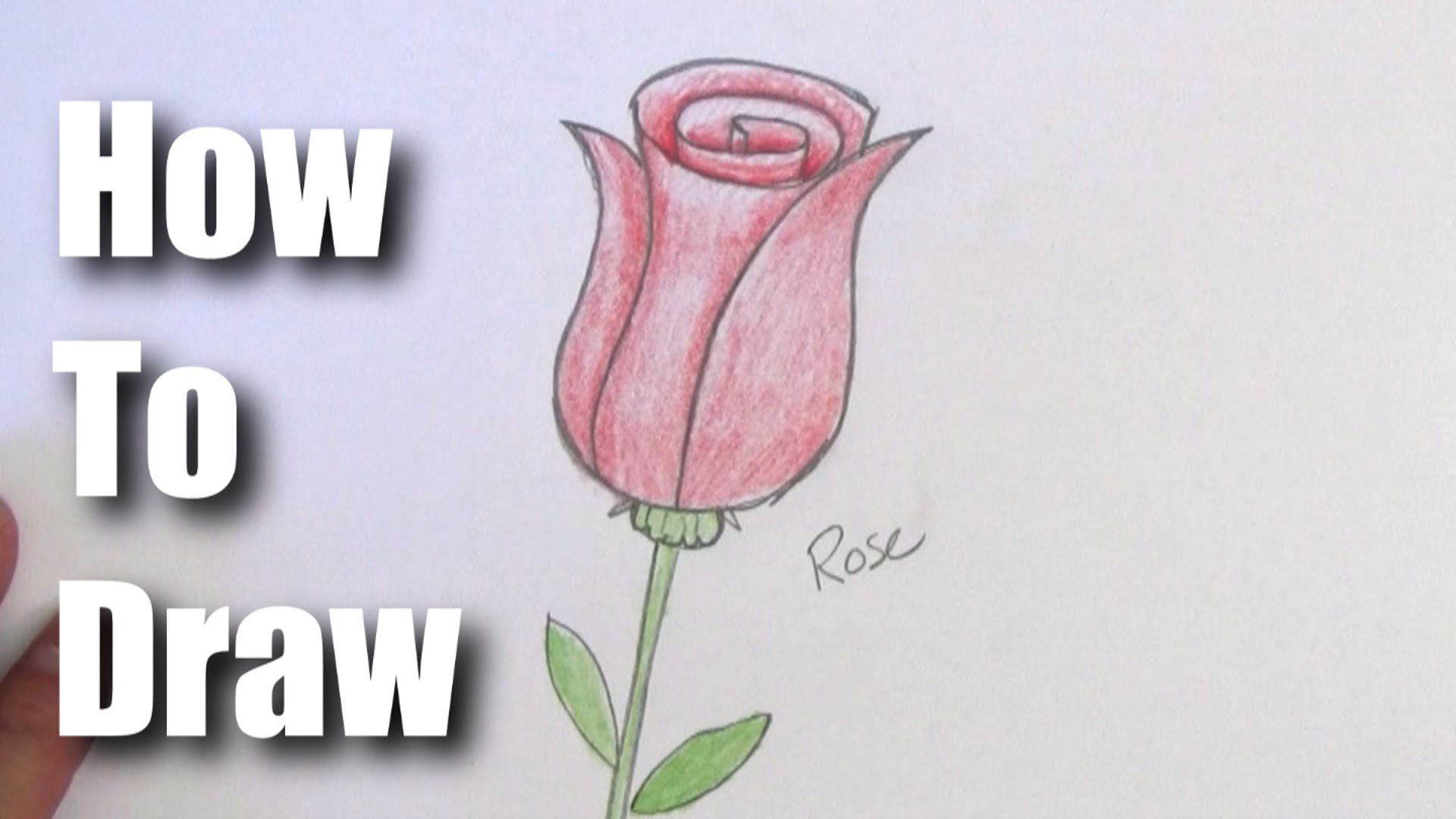 Drawn rose beginner For A A Rose Step