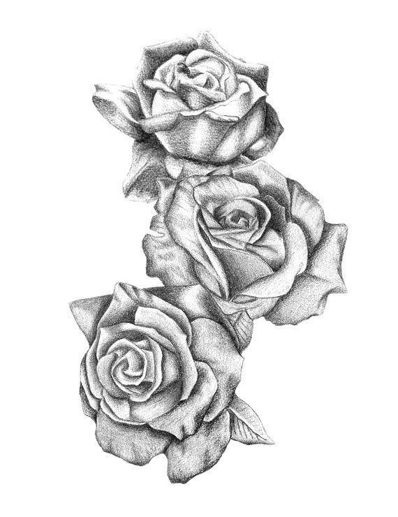 Drawn tattoo rose #1