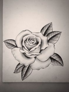 Drawn rose big rose As them can the get