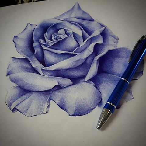 Drawn rose biro Biro videos # (@bendunningtattoo) and