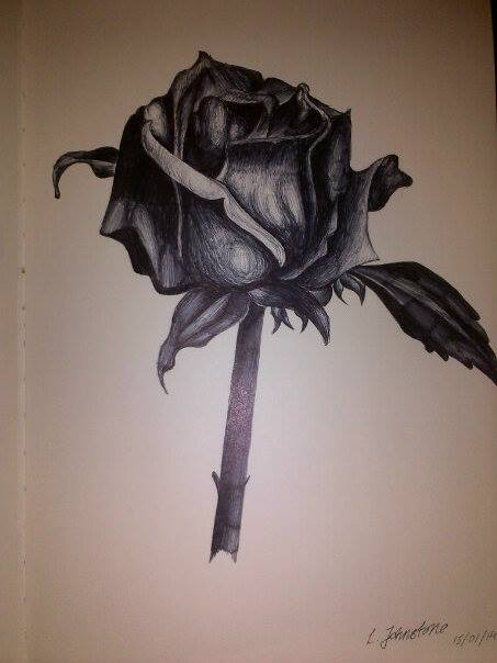 Drawn rose biro Good #biro #rose fashioned #drawing