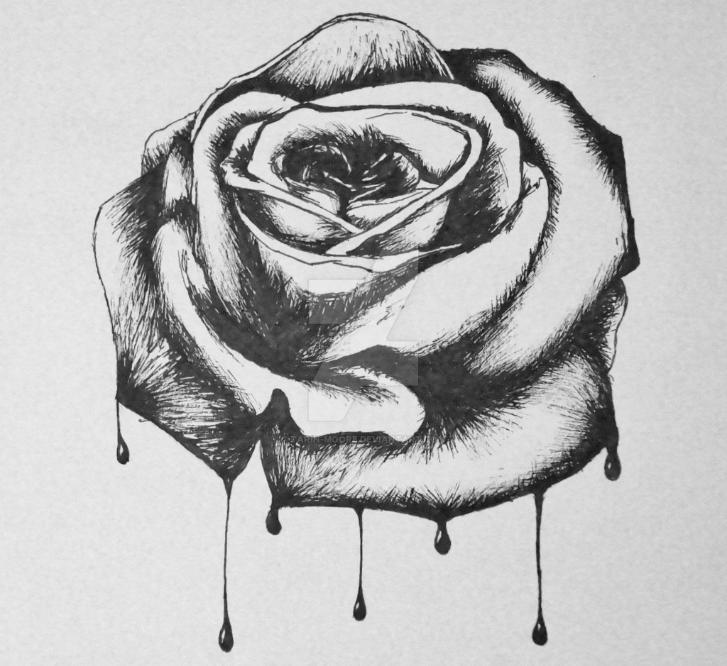 Drawn rose biro Bloody Tarin by Moore rose
