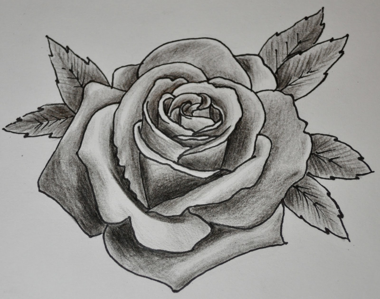 Drawn rose black gray rose New New Rose Grey Design