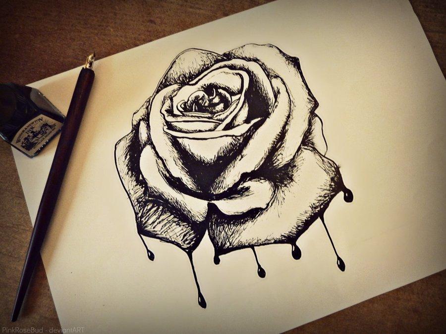 Drawn rose bleeding rose Half PinkRoseBud rose and half