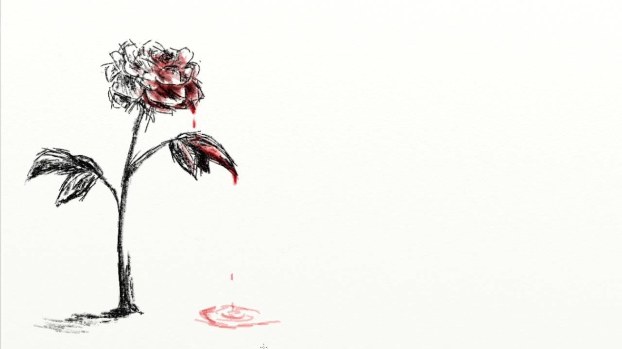 Drawn rose bleeding rose YouTube Rose Bleeding Rose Lapse