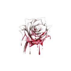 Drawn rose bleeding rose Rose Rose Values bloody Drawn