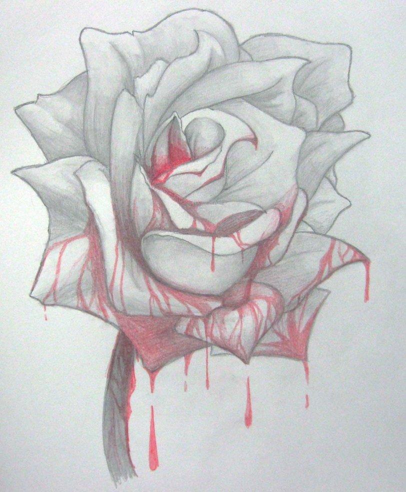 Drawn rose blood drawing Rose Bloody Yureilia Rose Yureilia